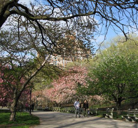 river side park