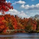 Que faire à New-York en automne ?