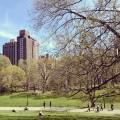 Le top 5 des parcs et jardins à visiter à New-York
