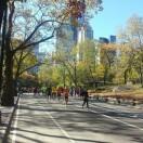 Où faire du sport à New-York ?