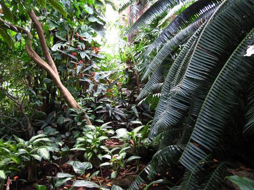 tropical pavillon