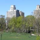 Le Prospect Park à Brooklyn