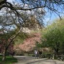 Riverside Park à New York