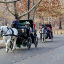 Les différentes façons de visiter New-York