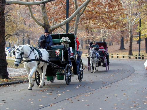 Visite de Central Park en calèche