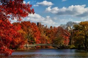 new-york-en-automne