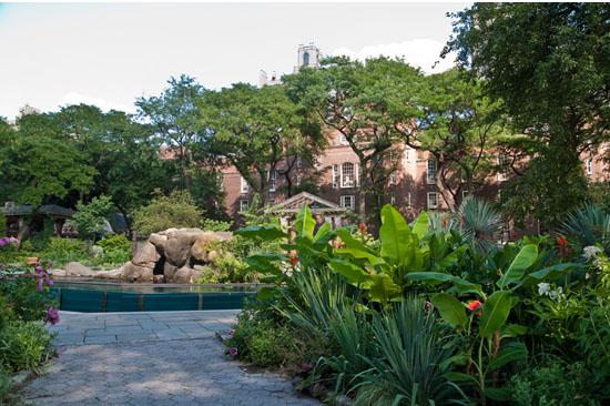 le zoo de central park à new york