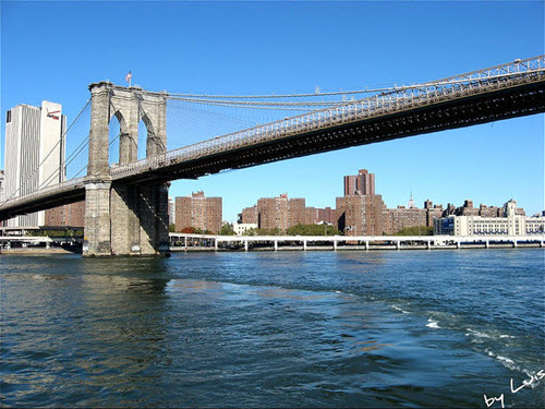 pont brooklyn