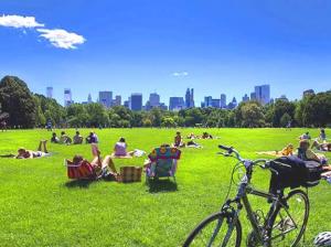 new york en vélo central park