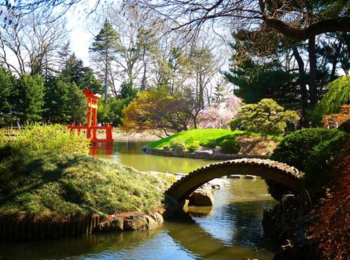 Le Brooklyn Botanic Garden