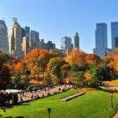 Les meilleurs activités de groupe à faire à New York : notre guide